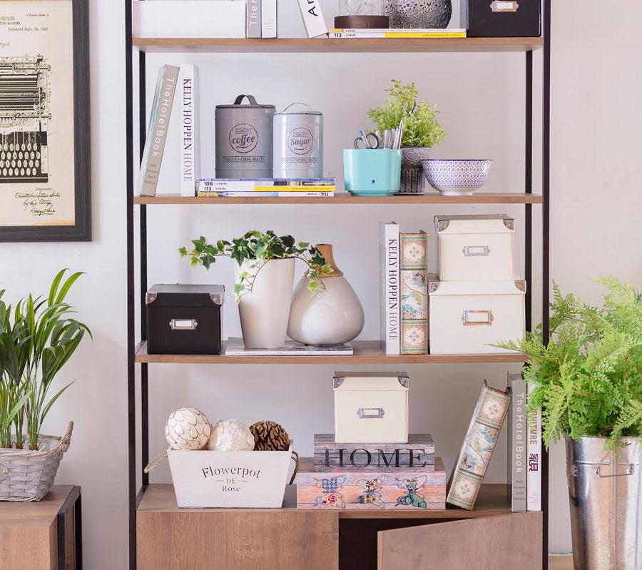 Repisa con objetos decorativos, plantas, cajas y libros