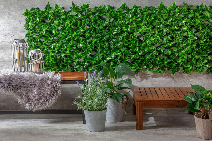 Jardin vertical y plantas de interior