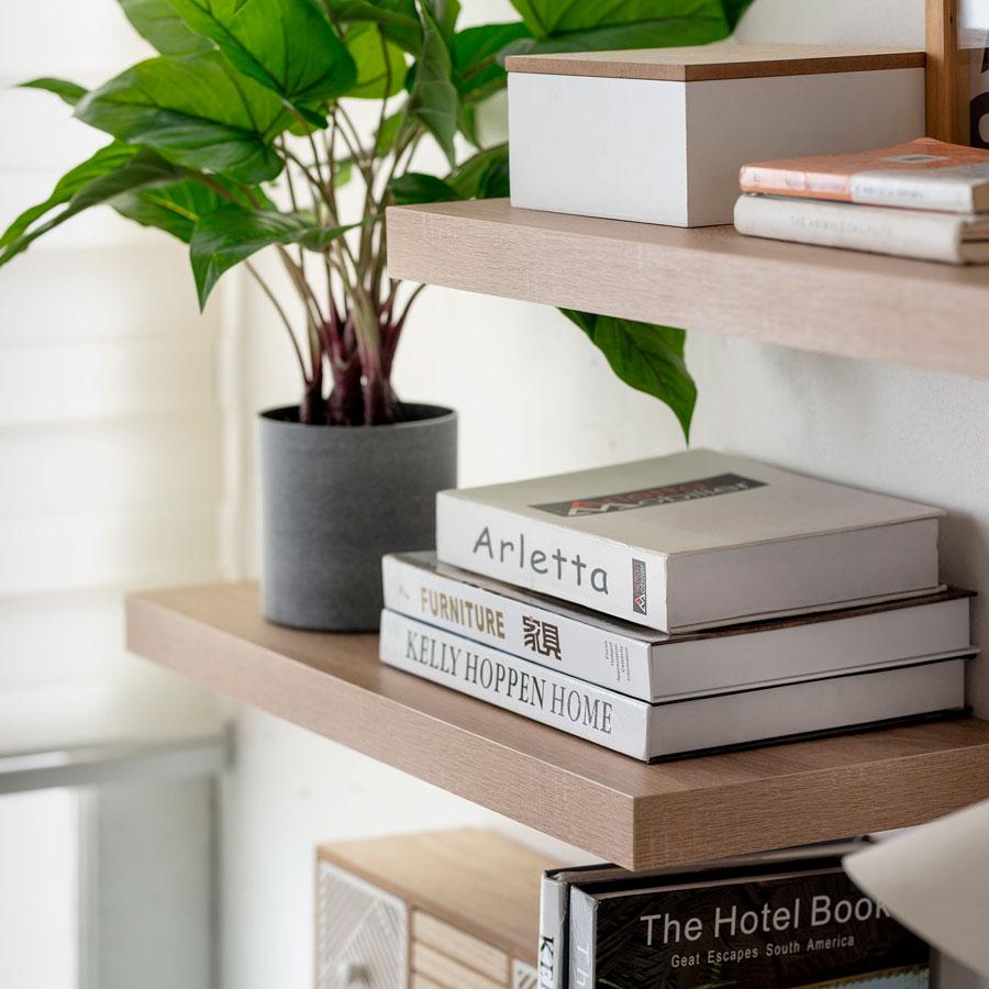 Repisas flotantes con libros y planta