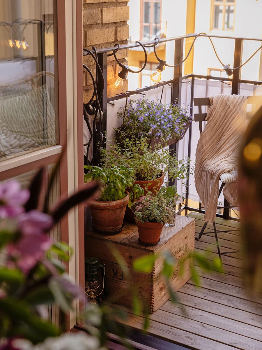 Varios maceteros y plantas en un balcón.