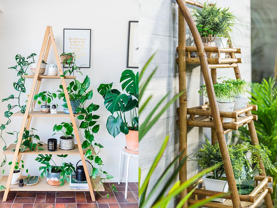Estantería de madera con plantas y maceteros.