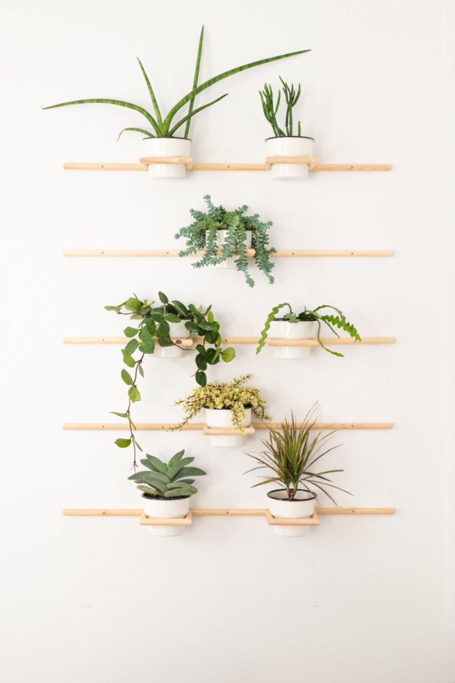 Paredes llenas de maceteros con plantas.